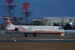 神宮寺ももさんが、高知空港で撮影した遠東航空 MD-82 (DC-9-82)の航空フォト(写真)