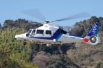 apphgさんが、静岡ヘリポートで撮影したオールニッポンヘリコプター AS365N3 Dauphin 2の航空フォト(写真)