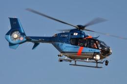 IL-18さんが、東京ヘリポートで撮影した警視庁 EC135T2+の航空フォト(写真)