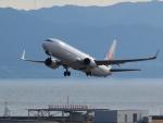 きゅうさんが、関西国際空港で撮影した日本航空 737-846の航空フォト(写真)