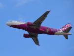 きゅうさんが、関西国際空港で撮影したピーチ A320-214の航空フォト(写真)