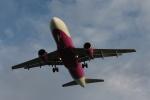 ぷぅぷぅまるさんが、那覇空港で撮影したピーチ A320-214の航空フォト(写真)