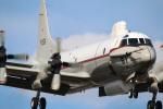 takaRJNSさんが、厚木飛行場で撮影した海上自衛隊 UP-3Cの航空フォト(写真)