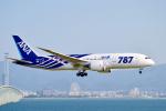 ストロベリーさんが、関西国際空港で撮影した全日空 787-881の航空フォト(写真)