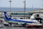 りゅうさんさんが、那覇空港で撮影したANAウイングス 737-54Kの航空フォト(写真)