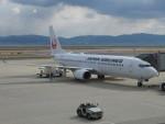fortnumさんが、関西国際空港で撮影した日本航空 737-846の航空フォト(写真)