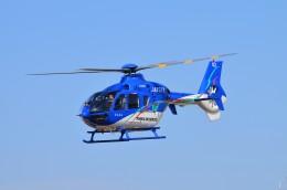 ヘリオスさんが、東京ヘリポートで撮影した東北エアサービス EC135P2+の航空フォト(写真)