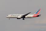みなかもさんが、羽田空港で撮影したアメリカン航空 787-8 Dreamlinerの航空フォト(写真)