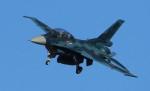 VIPERさんが、岐阜基地で撮影した航空自衛隊 F-2Bの航空フォト(写真)