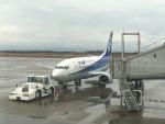 ライトブルーレフトさんが、新潟空港で撮影したANAウイングス 737-54Kの航空フォト(写真)