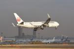 さくらの城南山。さんが、成田国際空港で撮影した日本航空 767-346/ERの航空フォト(写真)