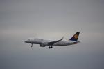 JA8037さんが、フランクフルト国際空港で撮影したルフトハンザドイツ航空 A320-271Nの航空フォト(写真)