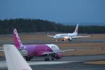 khideさんが、宮崎空港で撮影した日本航空 737-846の航空フォト(写真)