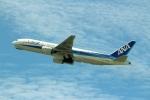 ハピネスさんが、羽田空港で撮影した全日空 777-281の航空フォト(写真)