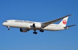 IL-18さんが、成田国際空港で撮影した日本航空 787-9の航空フォト(写真)