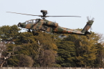 ケロたんさんが、名古屋飛行場で撮影した陸上自衛隊 AH-64Dの航空フォト(写真)