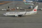 きんめいさんが、中部国際空港で撮影した日本航空 737-846の航空フォト(写真)