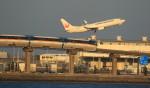 VIPERさんが、羽田空港で撮影した日本航空 737-846の航空フォト(写真)