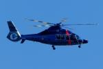 kaeru6006さんが、東京ヘリポートで撮影した警視庁 EC155B1の航空フォト(写真)