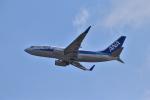 うめたろうさんが、関西国際空港で撮影した全日空 737-781の航空フォト(写真)