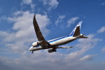 うめたろうさんが、伊丹空港で撮影した全日空 787-881の航空フォト(写真)