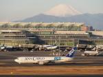 とりてつさんが、羽田空港で撮影した全日空 767-381F/ERの航空フォト(写真)