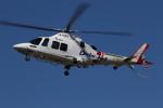 ゴンタさんが、静岡ヘリポートで撮影した静岡エアコミュータ AW109SP GrandNewの航空フォト(写真)