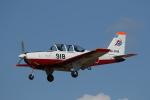 ゴンタさんが、静浜飛行場で撮影した航空自衛隊 T-7の航空フォト(写真)