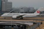 じゃがさんが、羽田空港で撮影した日本航空 787-846の航空フォト(写真)