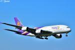 吉田高士さんが、成田国際空港で撮影したタイ国際航空 A380-841の航空フォト(写真)