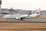 Shiro_ichiganさんが、伊丹空港で撮影した日本航空 737-846の航空フォト(写真)