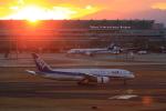 Fat Methenyさんが、羽田空港で撮影した全日空 787-881の航空フォト(写真)
