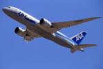 おっしーさんが、成田国際空港で撮影した全日空 787-881の航空フォト(写真)