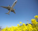TopGunさんが、福岡空港で撮影した日本航空 777-246の航空フォト(写真)