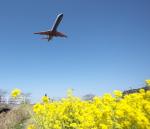 TopGunさんが、福岡空港で撮影したアイベックスエアラインズ CL-600-2C10 Regional Jet CRJ-702の航空フォト(写真)