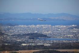 musashiさんが、高松空港で撮影した全日空 A321-211の航空フォト(写真)