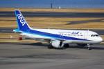 ばっきーさんが、羽田空港で撮影した全日空 A320-211の航空フォト(写真)