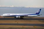 ばっきーさんが、羽田空港で撮影した全日空 777-381/ERの航空フォト(写真)
