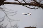 kix大好きカズチャマンさんが、大阪城で撮影した日本航空 767-346/ERの航空フォト(写真)