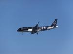 パピヨンさんが、羽田空港で撮影したスターフライヤー A320-214の航空フォト(写真)
