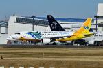 ポン太さんが、成田国際空港で撮影したセブパシフィック航空 A320-214の航空フォト(写真)