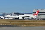 ポン太さんが、成田国際空港で撮影したターキッシュ・エアラインズ A330-343Xの航空フォト(写真)