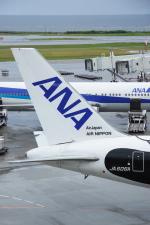 安芸あすかさんが、那覇空港で撮影した全日空 767-381/ERの航空フォト(写真)