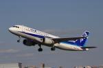 ゴハチさんが、伊丹空港で撮影した全日空 A320-211の航空フォト(写真)