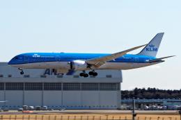 コージーさんが、成田国際空港で撮影したKLMオランダ航空 787-9の航空フォト(写真)