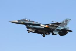 ケロたんさんが、岐阜基地で撮影した航空自衛隊 F-2Aの航空フォト(写真)