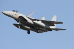 ケロたんさんが、岐阜基地で撮影した航空自衛隊 F-15J Eagleの航空フォト(写真)