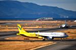 we love kixさんが、関西国際空港で撮影したバニラエア A320-214の航空フォト(写真)