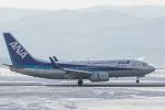 岡崎美合さんが、旭川空港で撮影した全日空 737-781の航空フォト(写真)