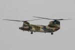 camelliaさんが、名古屋飛行場で撮影した航空自衛隊 CH-47J/LRの航空フォト(写真)